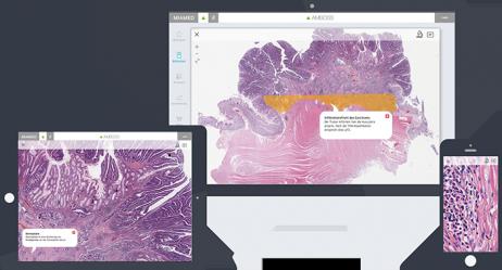Virtuelle Mikroskopie