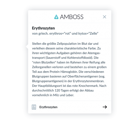 AMBOSS-Kurzdefinition in Anki-Lernkarten